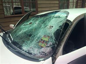 WINDSCREEN FITMENTS/ FLAT GLASS AND CHIP REPAIRS