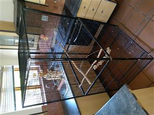 Bird Cage (Large: 94[L] x 168[H] x 77[W])