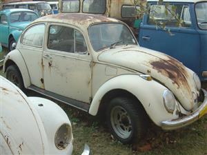 4 Beetles 1 Buggy
