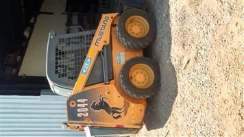Bobcat for sale