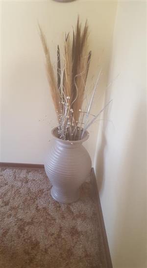 Beige potplant for sale