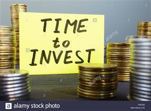 I am a serious private investor looking for positive investment opportunities an