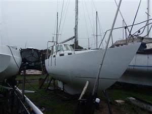 30ft Samson Ferrocement Sail Yacht