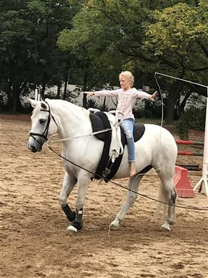 Therapeutic & Disabled Horse Riding Lessons