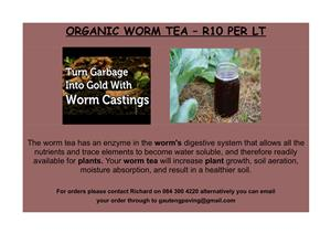 red wiggler worms and farm available
