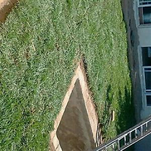Instant Lawn & Compost