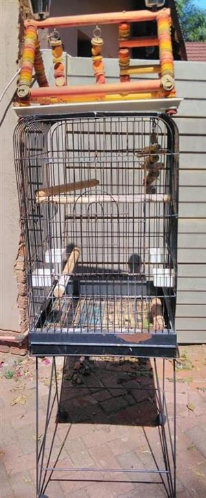 Parrot cage with toys