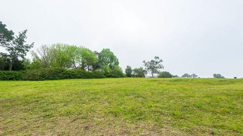 Vacant Land Residential For Sale in BLANCO