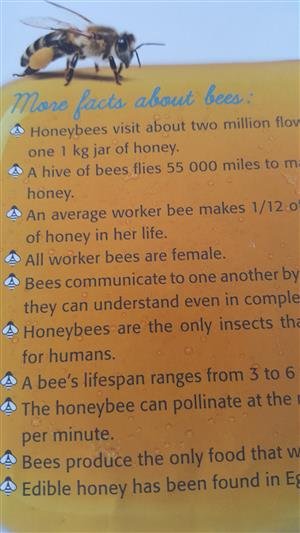 Bee Hive and Bees for sale