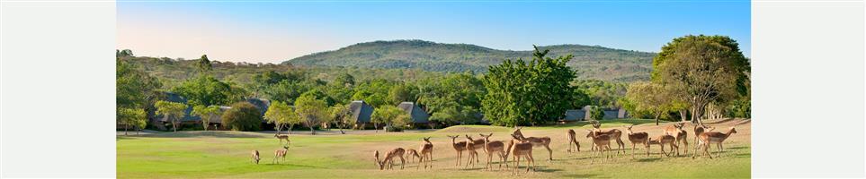 Kruger Park Lodge week for sale 12/June to 19 June 2020