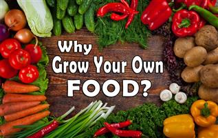 Everyone Should be 'Growing Your Own Food'