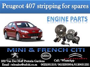 Engine parts On Big Special for Peugeot 407