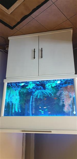 3 Foot Fish Tank For Sale