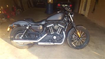 2014 Harley Davidson XL833