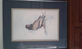 FISH EAGLE PAINTING BY LORAINE FIELDGATE
