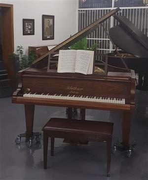 Bluthner Grand Piano 1915