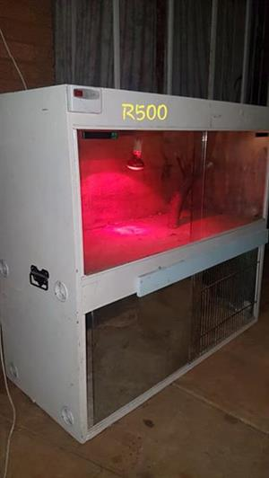 Snake cages for sale