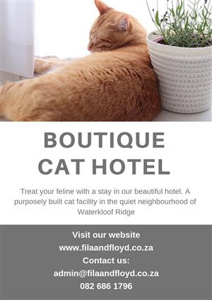 Purrfect Cattery in Town!