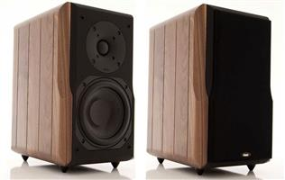 Chario Constellation Delphinus Loudspeakers with stands