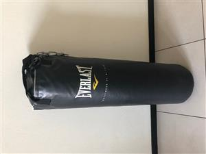 Everlast Punching Bag & Gloves
