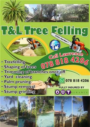 Tree Felling Services in  the Pretoria, Centurion and Midrand Areas