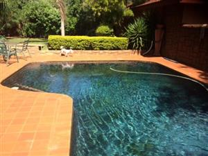 Ace swimming pools and lapa combo deals