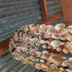 Shells windchime 2m long