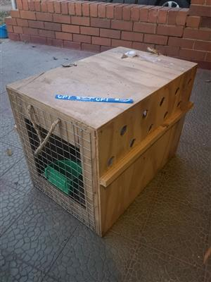 Puppy / Small Dog Travel Crates