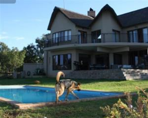 THATCHED ROOF HOME IN LEEUWFONTEIN ESTATE
