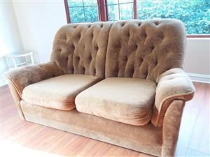 Velvet 2 seater chesterfield couch