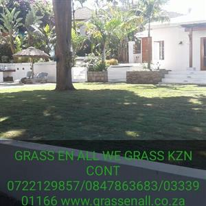 GRASS EN ALL WE GRASS K.Z.N from 1sqmt to 1000s sqmts because we lay it the right way CONT0722129857 / 0333901166