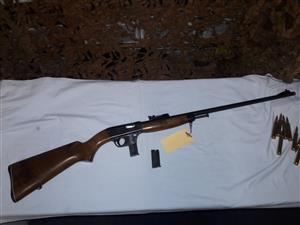 Unique .22lr semi-automatic rifle