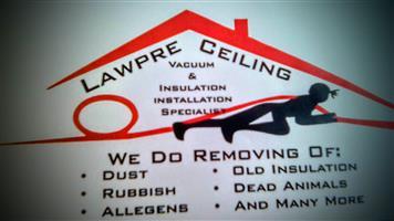 ceiling vacuum cleaning specialist