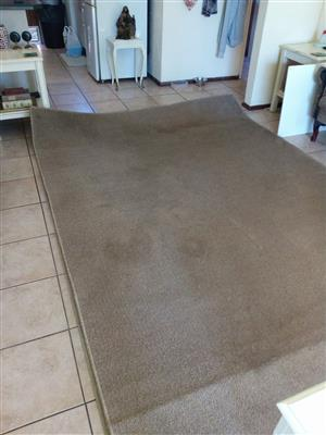 Ash brow carpet