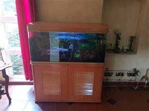 Jebo Fish tank for sale