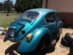 Beetle Bodies and parts for sale