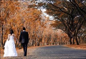 Wedding bridal company