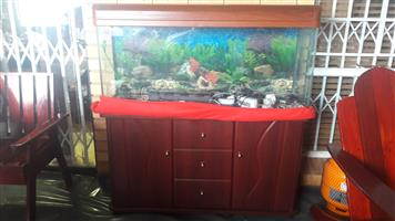 Large Fish Aquarium with Cabinet