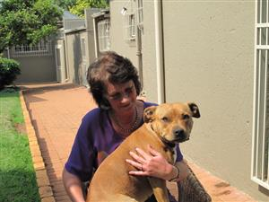 Live in Pet Sitter Available - Muldersdrift & Honeydew & Northern Randburg suburbs
