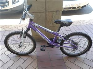 """Kiddies Avalanche 20"""" Bicycle"""