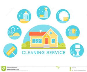 TSHINAMAKONDE CLEANING SERVICES