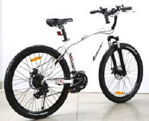 Electrical Cycling Bike
