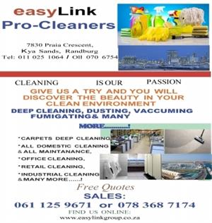 Deep Cleaning Of Carpets Couches Mattresses Chairs & Loose Rugs