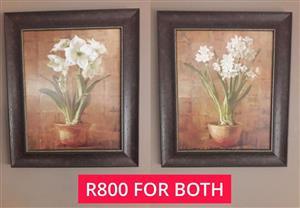 2x Framed flower paintings for sale.