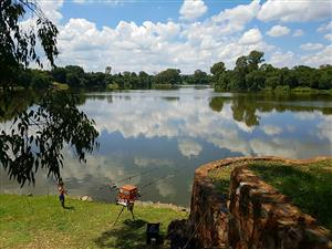 Vaal River Farm and Holiday Resort