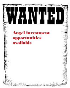 Angel investment opportunity. Diversed risks \. From R180 000 to R1.55m
