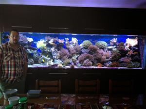Fish Tank / Aquarium / Pond Services