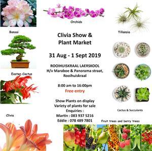 Clivia show and Plantmarket also Bonsai show