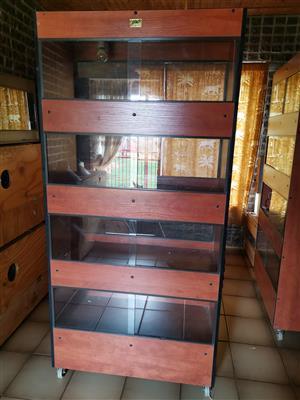 4 Tier Draco Reptile box for sale
