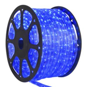 100m LED rope light (Blue colour) plus power supply controller